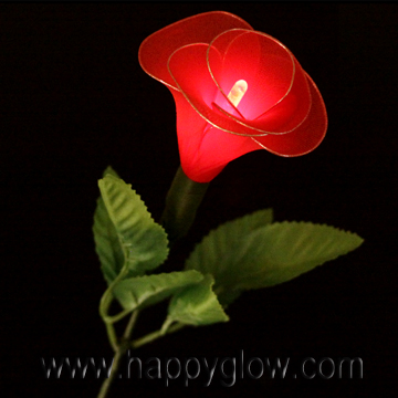 Premium Glow Rose, Happyglow glow products